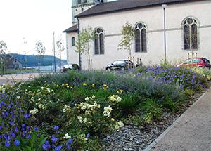 Aménagement paysager Vosges